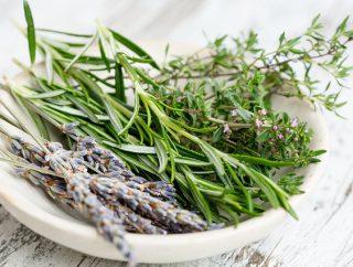 Dlaczego warto sięgać po zioła?