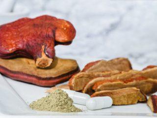 Chińska medycyna naturalna w zasięgu ręki, czyli o niezwykłych właściwościach tajemniczego grzyba
