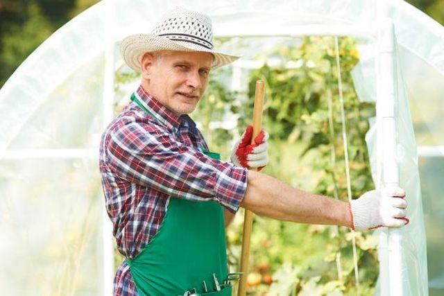 Szklarnia ogrodowa ze szkła, folii czy poliwęglanu – wady i zalety?